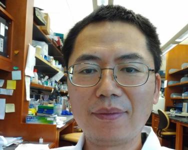 Huabo Wang, PhD