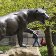 Pitt Panther statue outside WPU